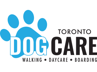 Toronto Dog Care